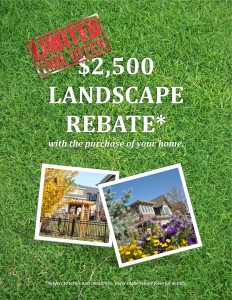 Landscape rebate flyer